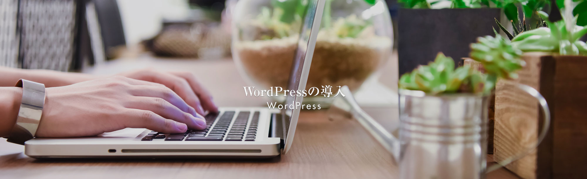 WordPressの導入